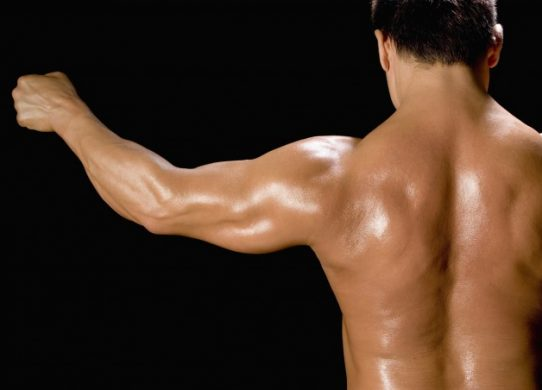 Back shot of a male bodybuilder holding up his arm, rear view, black background