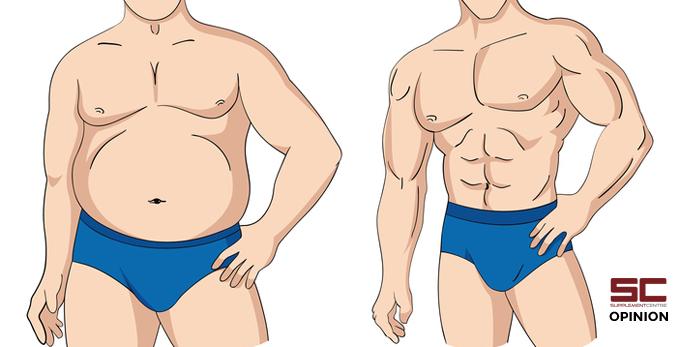 fat vs thin men cartoon